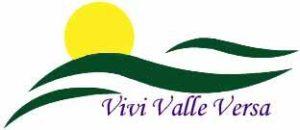 vivi valle versa logo